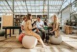 Meeting Vluv aktives Sitzen | Worktrainer.de