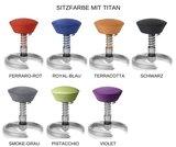 Sitzfarbe Titan Swopper Classic