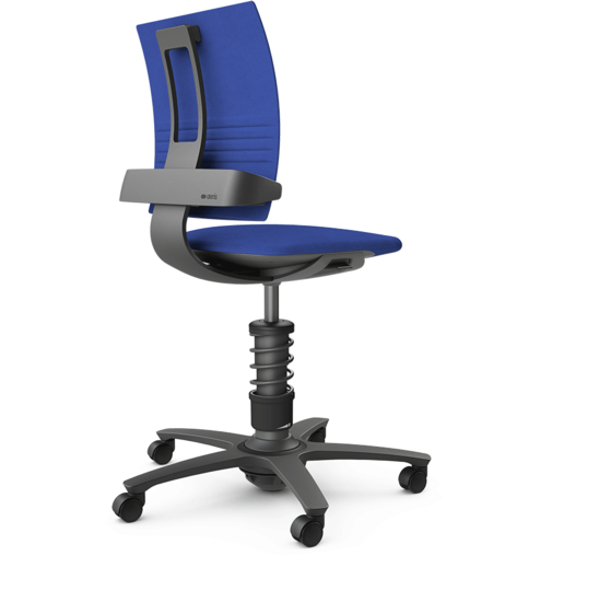 Active Office Chair - 3Dee